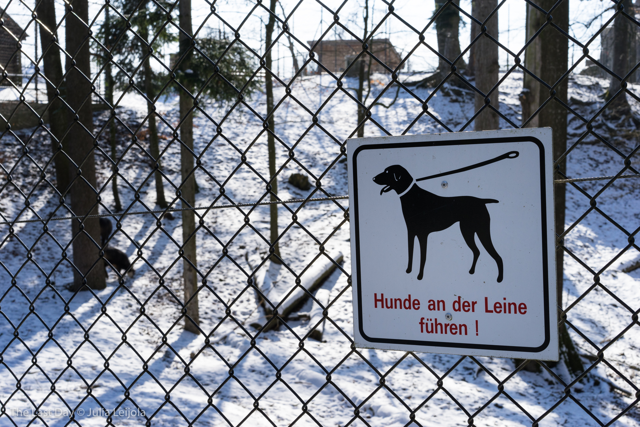 A sign telling people to keep their dogs on the lead is attached to the fence of an animal enclosure.